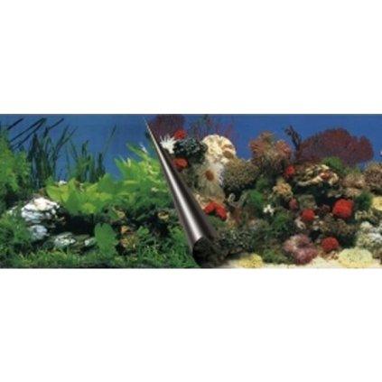 Pozadí akvarijní Stone+Coral Duvo+ 60 x 30 cm