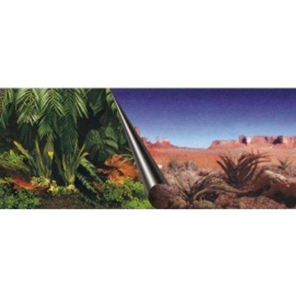 Pozadí akvarijní Jungle+Dessert Duvo+ 120 x 50 cm