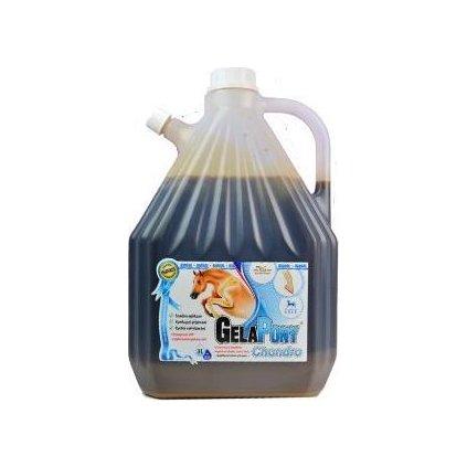 Gelapony Chondro Biosol HYAL 3000ml