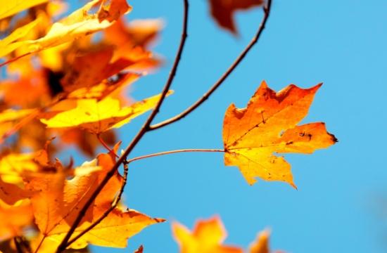 Podzim nabitý akcemi!