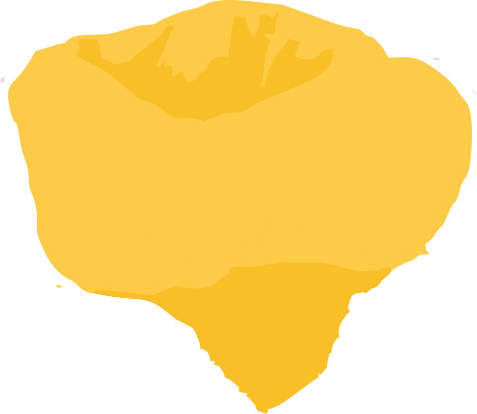 Tulipytlíky