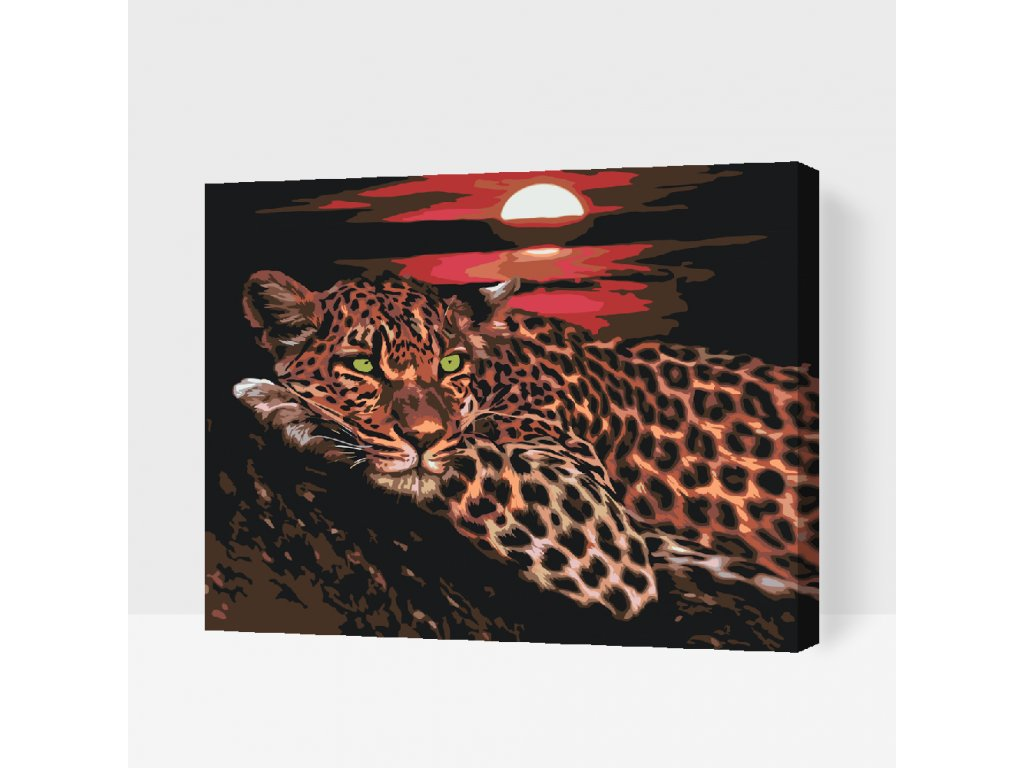 Paint by number - Leopard by sunset (Frame With Frame, Size 40x50cm (16'' x 20''))