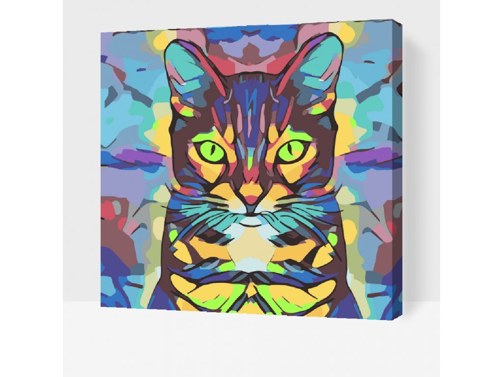 Paint by number - Colorful Cat (Frame Without Frame (canvas only), Size 50x50cm (20'' x 20''))