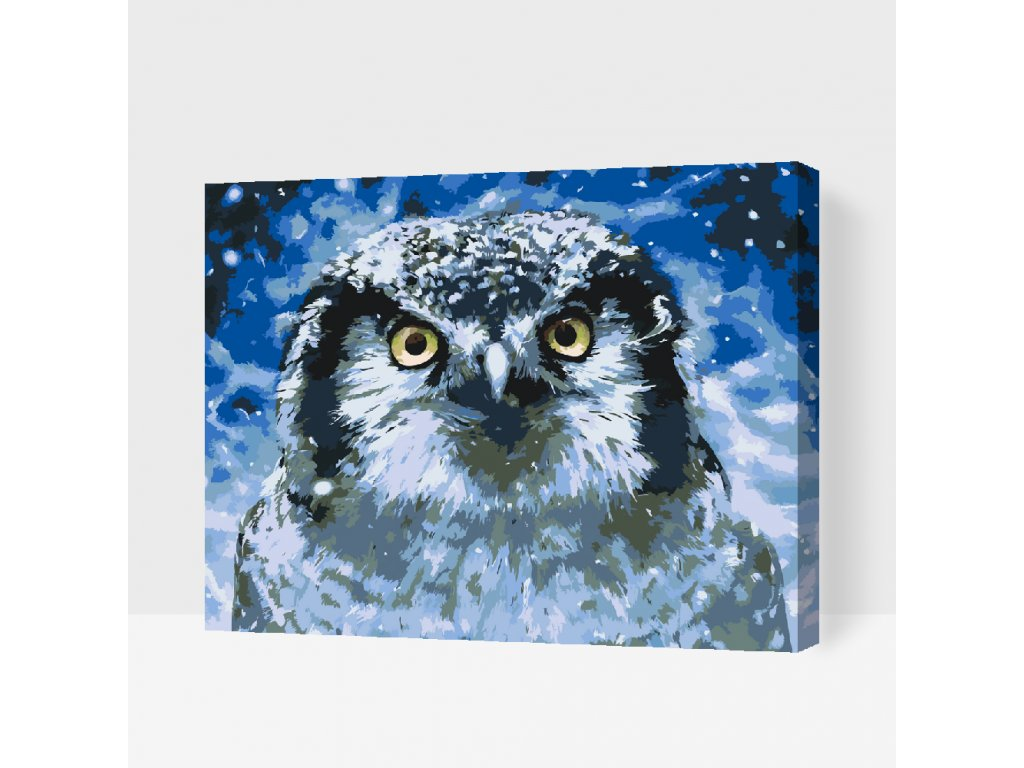 Paint by number - Owl (Frame With Frame, Size 40x50cm (16'' x 20''))