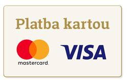 Online platby (platba kartou)