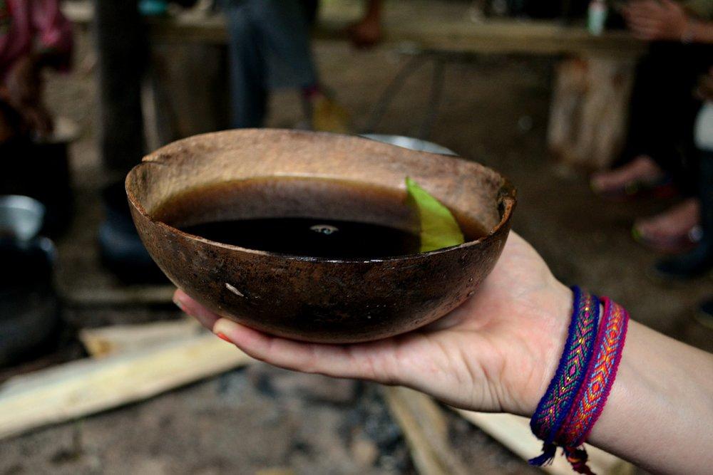 Wayusa - ekvádorská sestřenice yerba maté