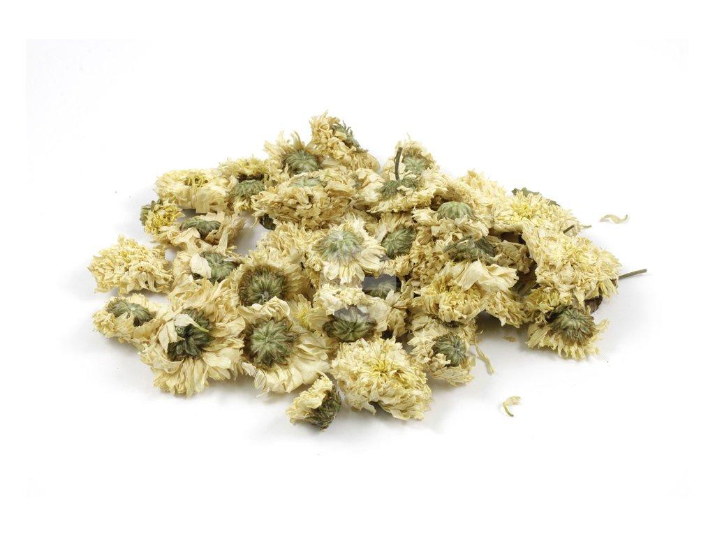 16 kvet chryzantemy juha ha