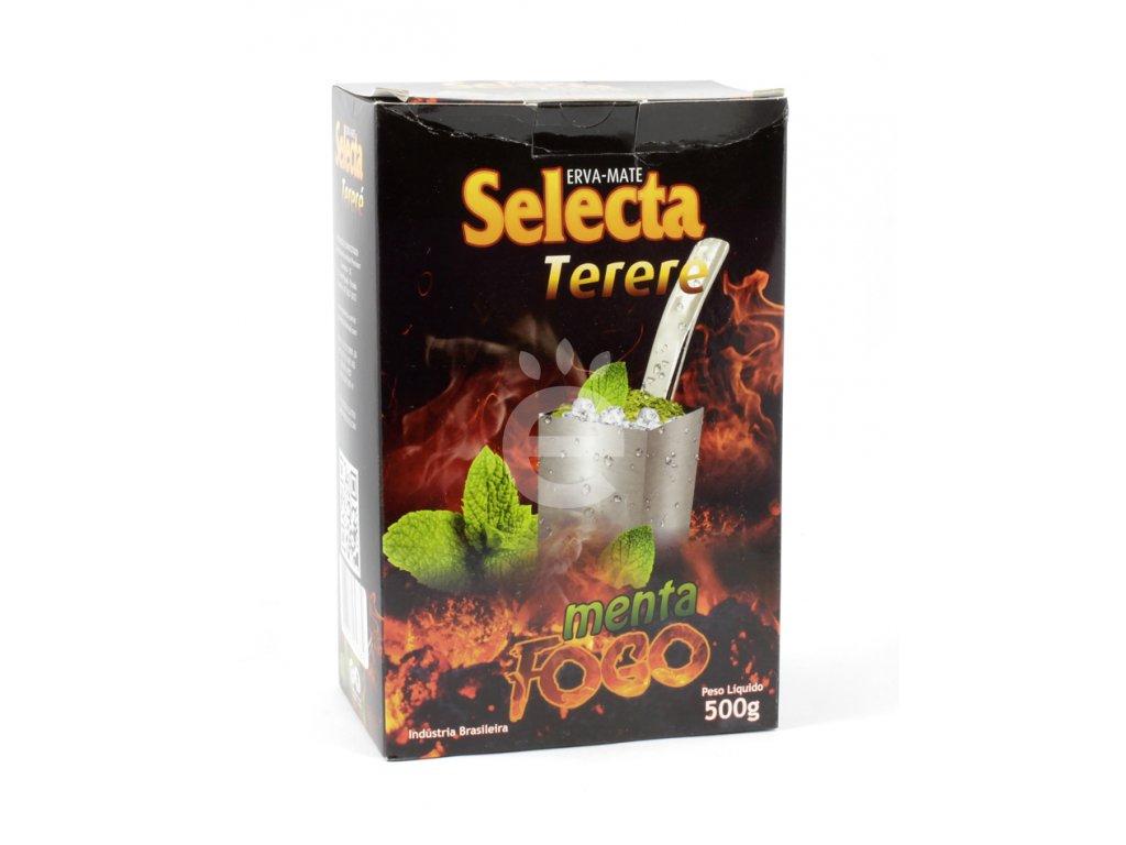 selecta terere menta fogo 500g 01