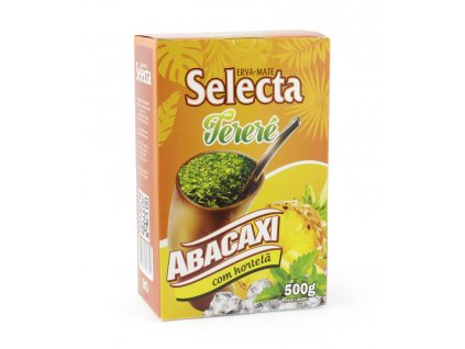 selecta abacaxi terere 500g 01