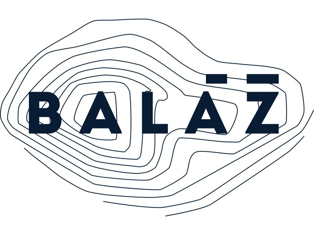 Sauvignon 2020 Vinařství Baláž