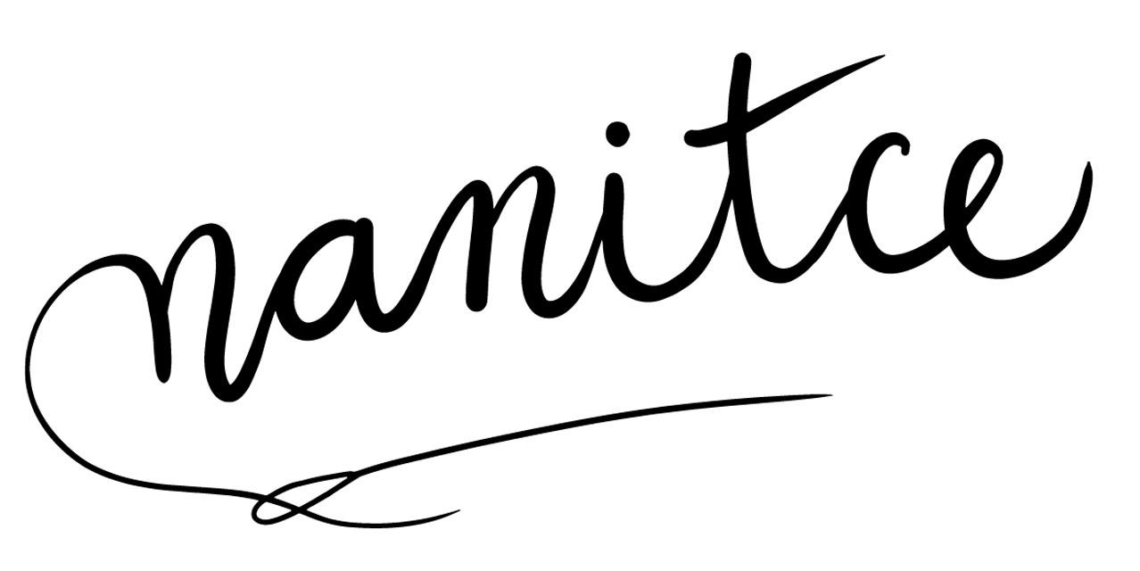 nanitce_logo