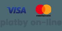 přijímáme platby on-line