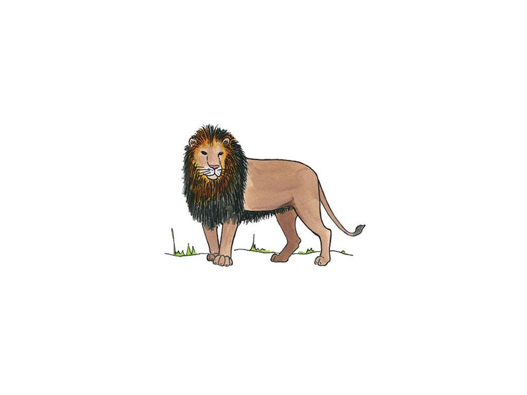 0414 lion copy