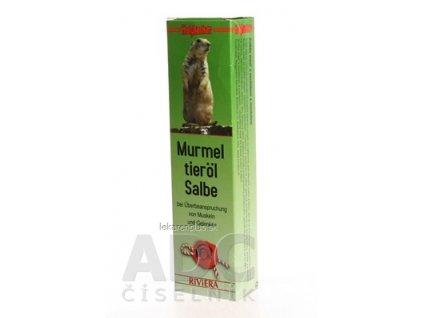 holzhacker Svištia masť (Murmel tieröl Salbe) 1x75 ml