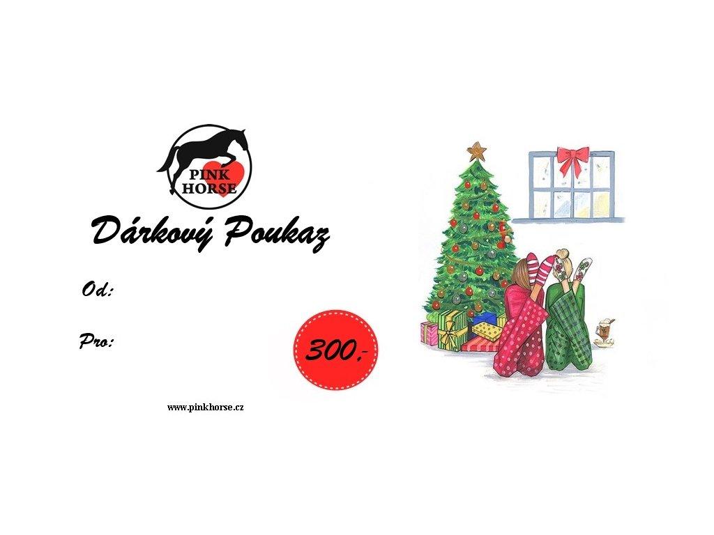 Vánoční Poukaz 300,- kč