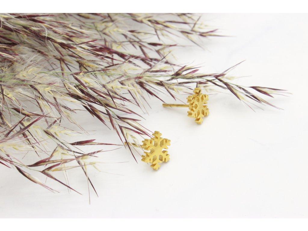 Náušnice z chirurgickej ocele Snowflake Gold