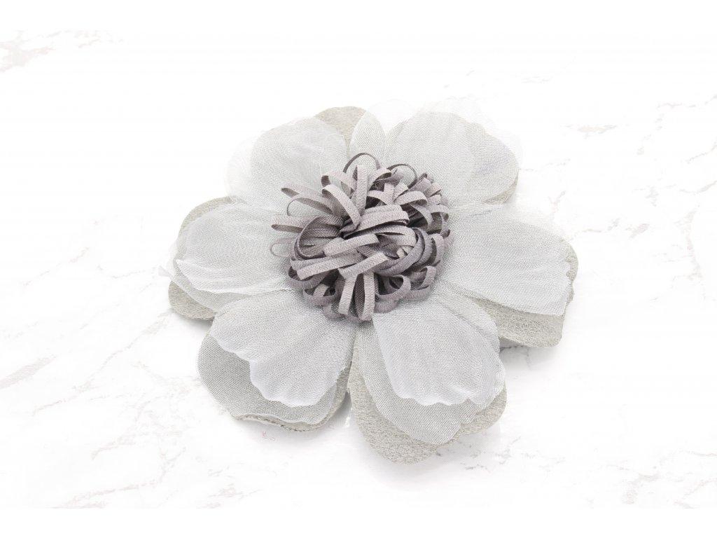 Krásny kvet sivej farby