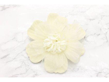 Krásny kvet maslovej farby