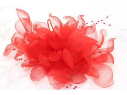 Maxi červený kvet