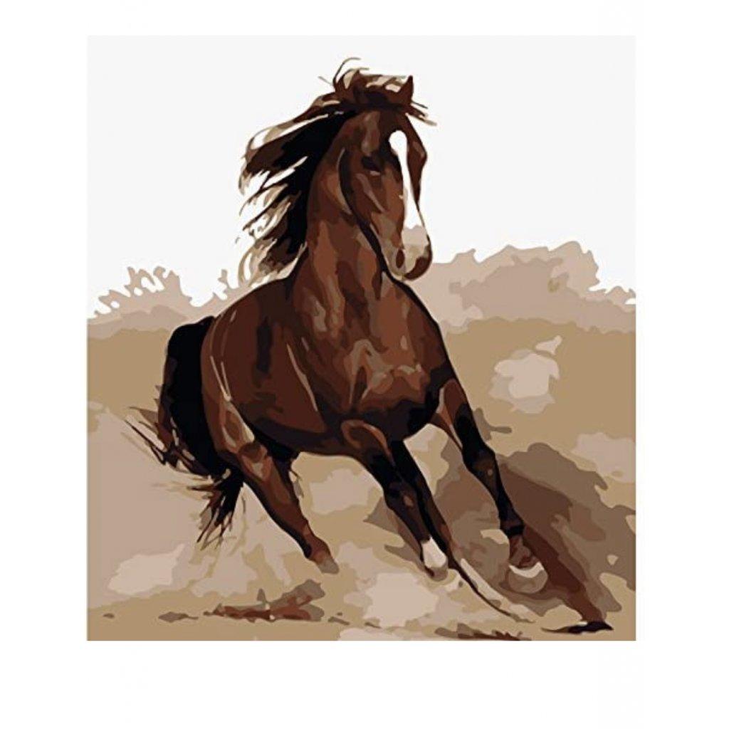 """Malování podle čísel  """"Kůň"""" 40x50 cm"""