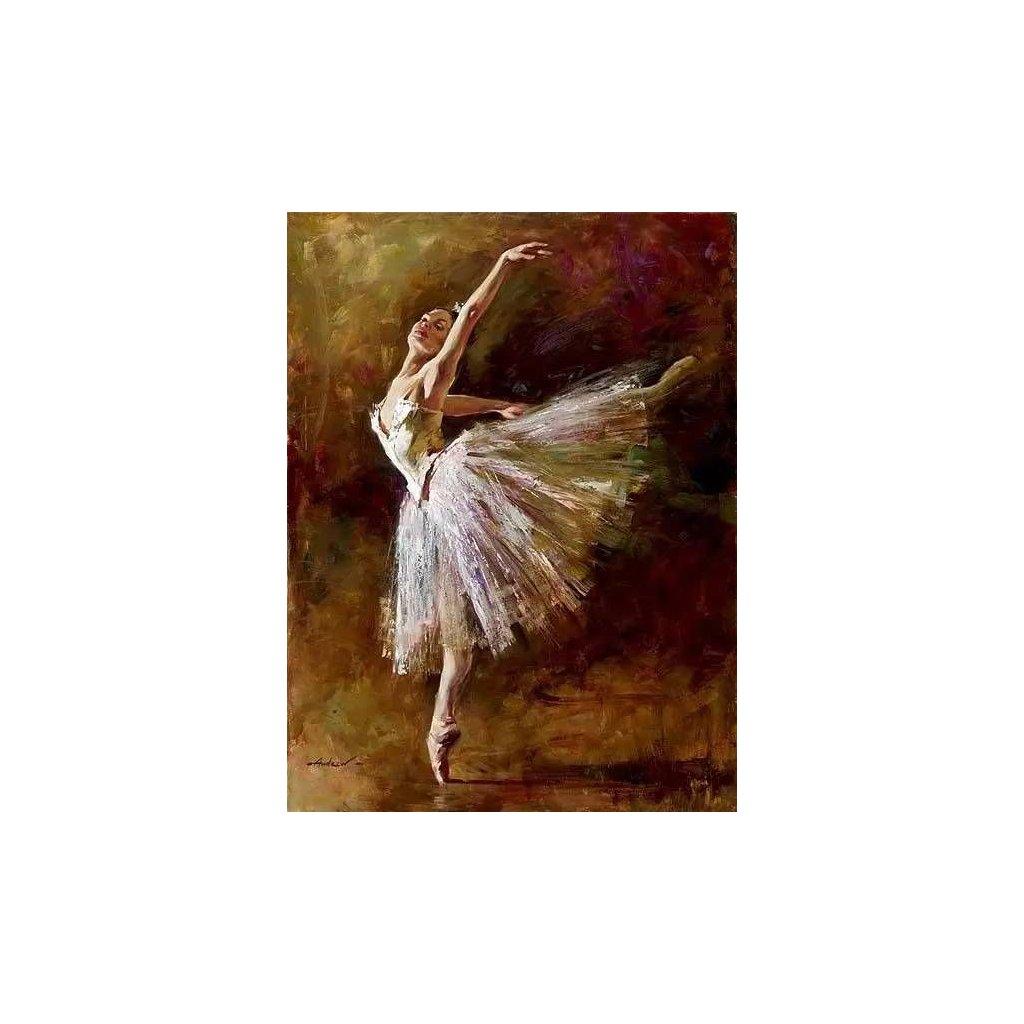 """Malování podle čísel s rámem """"Baletka 6"""" 50x40cm"""