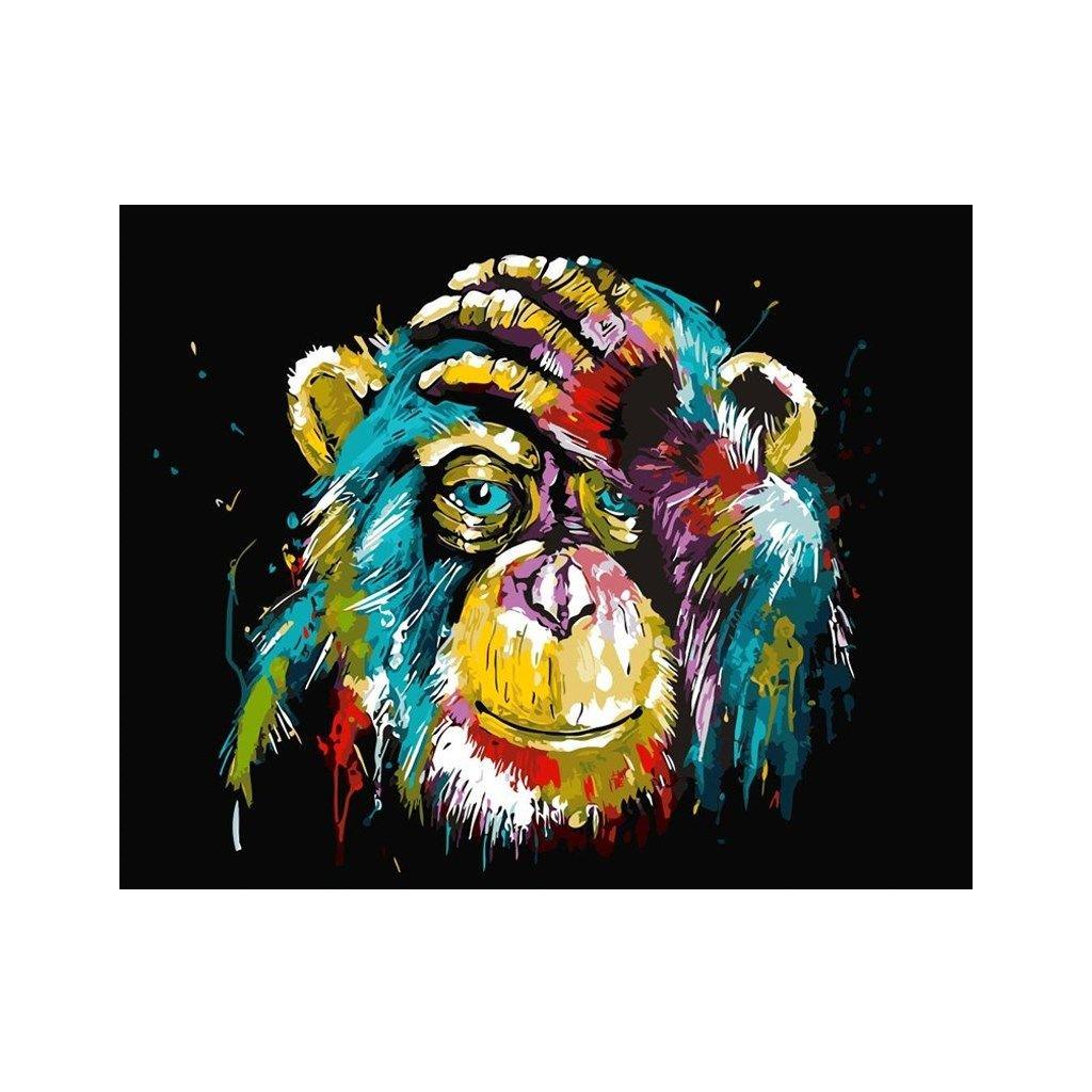 """Malování podle čísel s rámem """"Barevná opice"""" 50x40cm"""