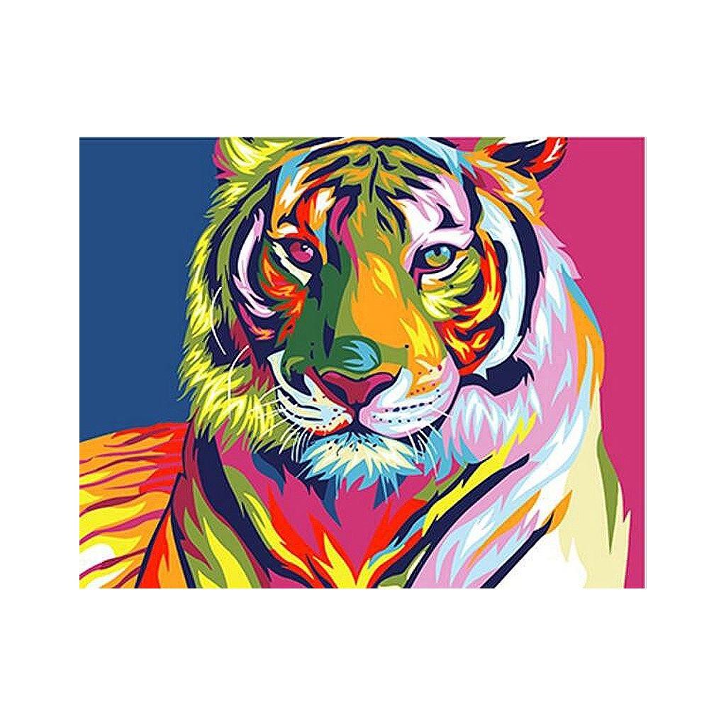"""Malování podle čísel s rámem """"Barevný tygr"""" 50x40cm"""