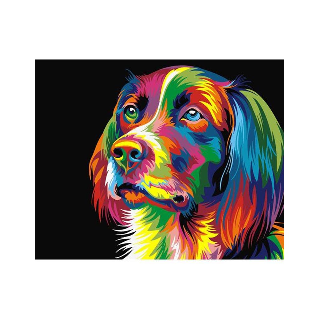 """Malování podle čísel s rámem """"Barevný pes"""" 50x40cm"""