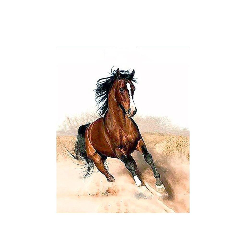 """Malování podle čísel s rámem """"Kůň 2"""" 50x40cm"""