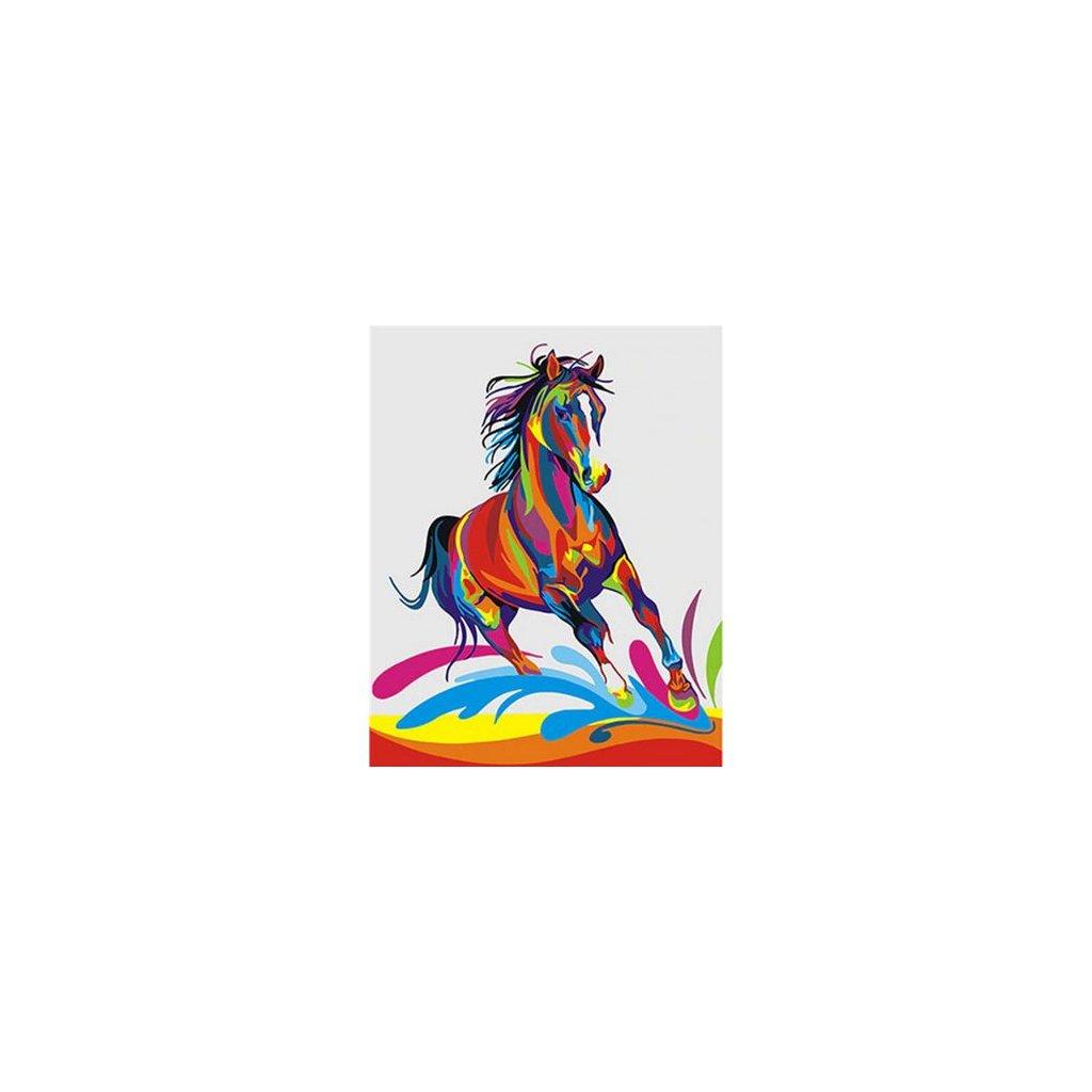 """Malování podle čísel s rámem """"Barevný kůň"""" 50x40cm"""