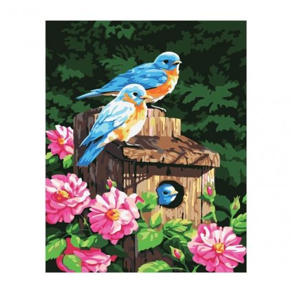 namaluj si obraz malovanie podla cisiel art painting vtaky stylovydomov