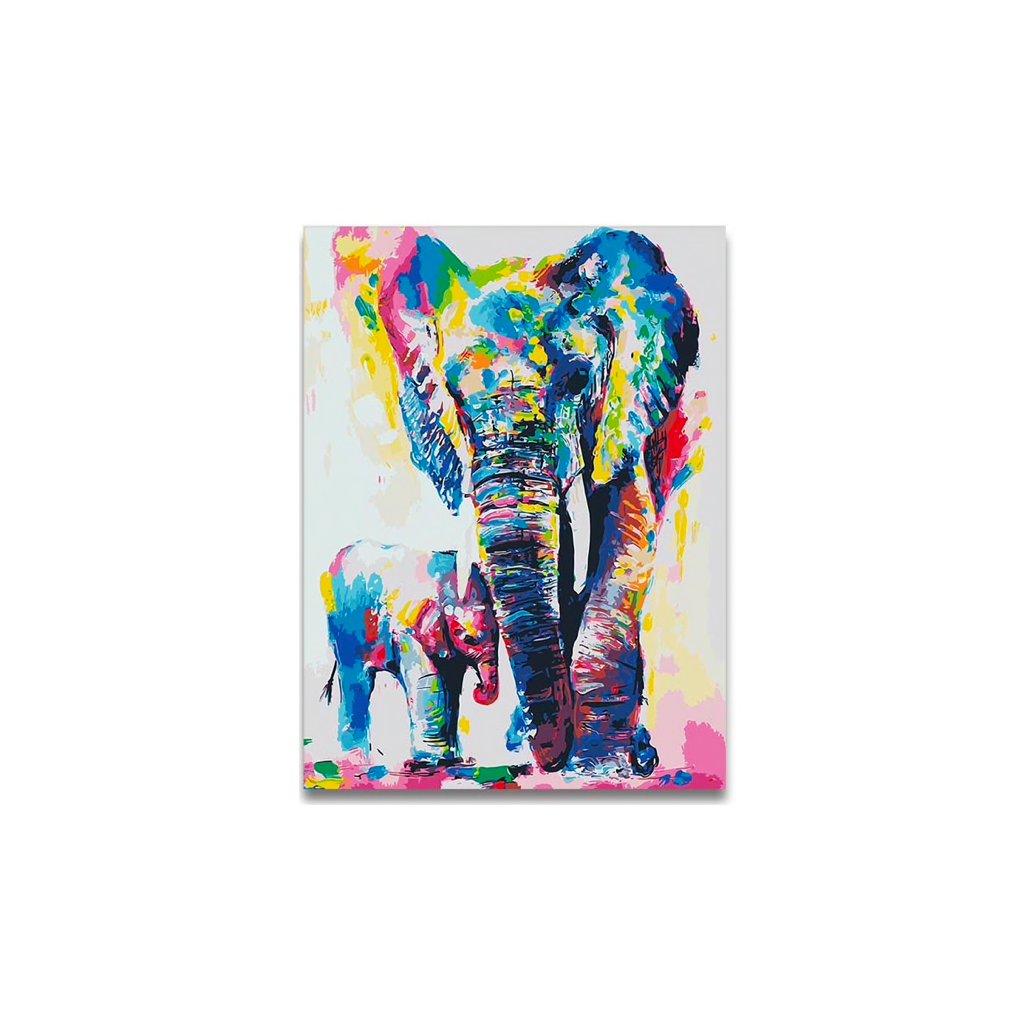 Farebné slony