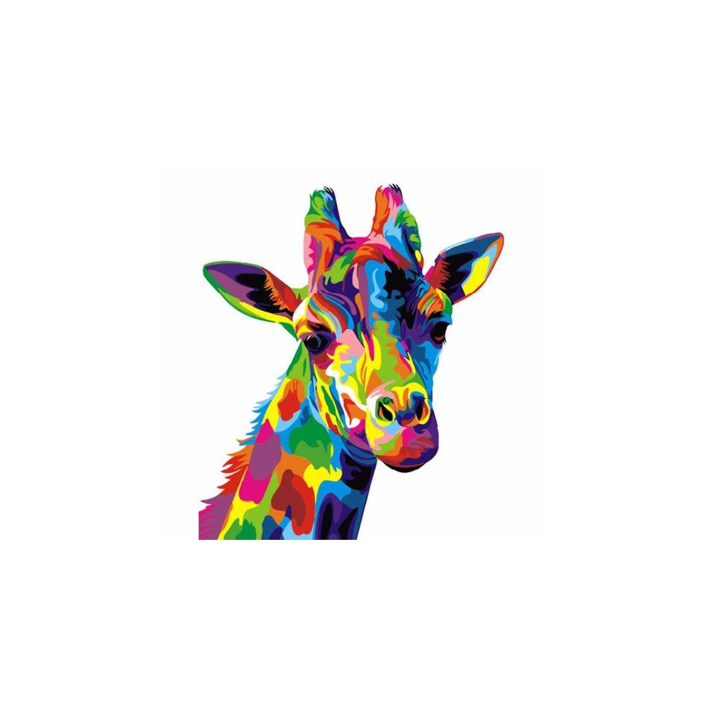 Farebná žirafa