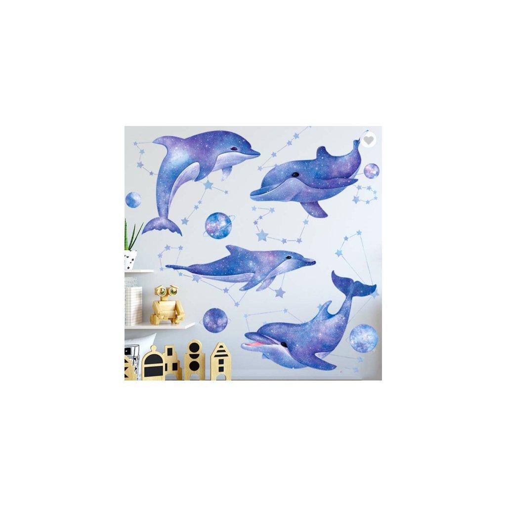 Delfíny úvod 2