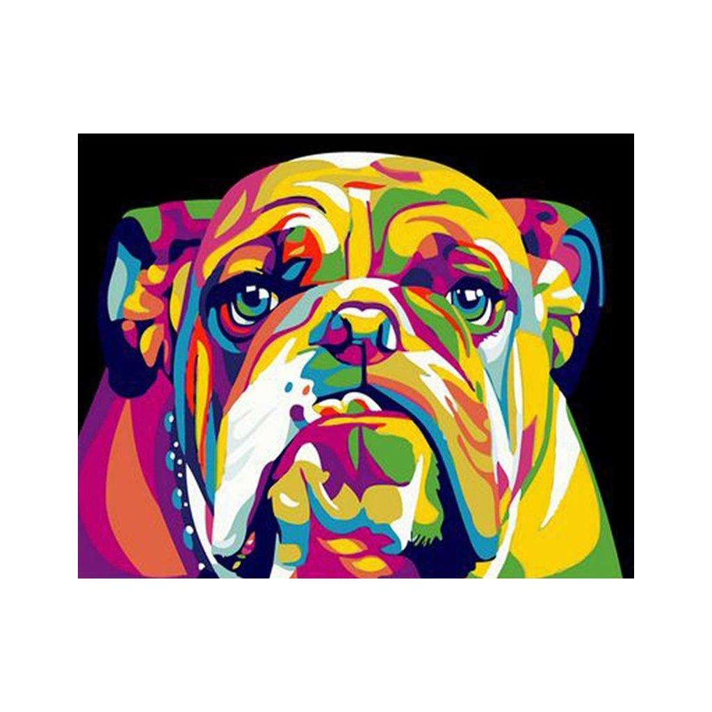 """Festés számok szerint kép kerettel """"Színes Bulldog"""" 40x50 cm"""
