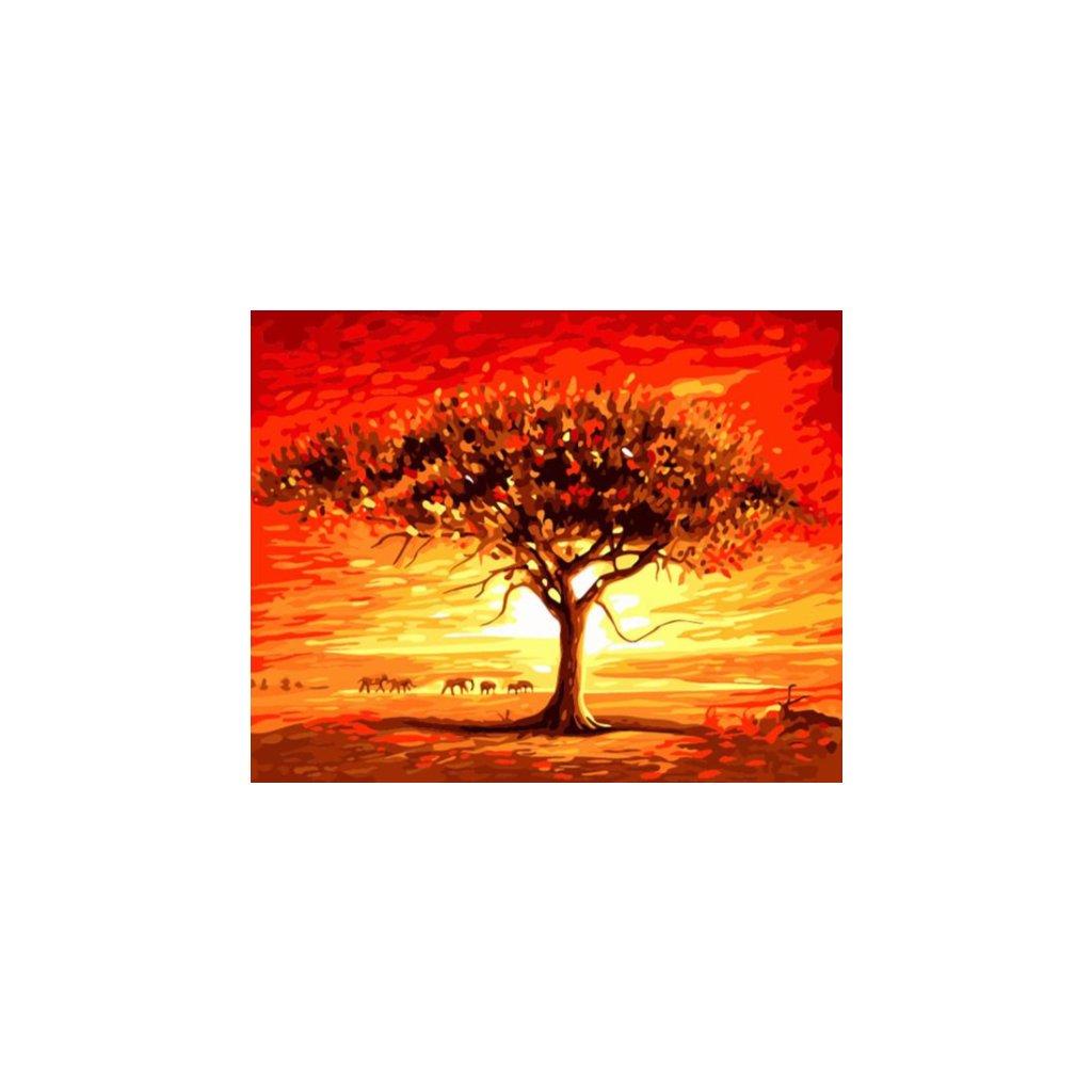 Strom v púšti