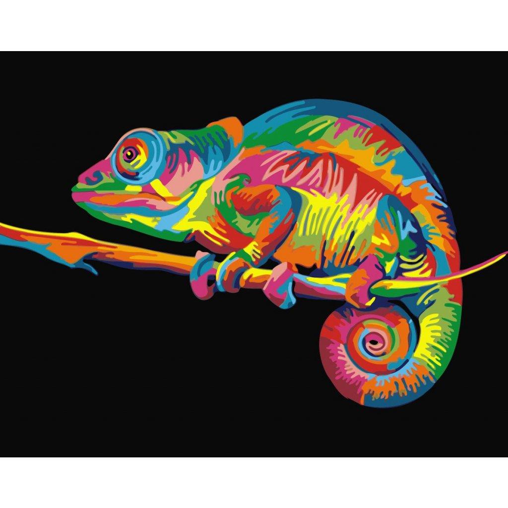 WM 3118 彩色蜥蜴