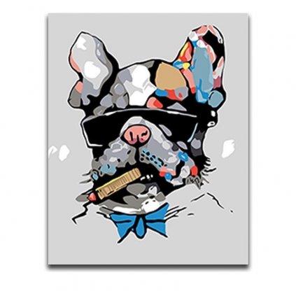 namaluj si obraz malovanie podla cisiel art painting francuzsky buldocek stylovydomov