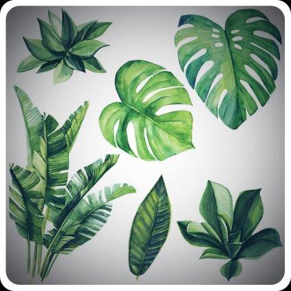 Zelené listy úvod