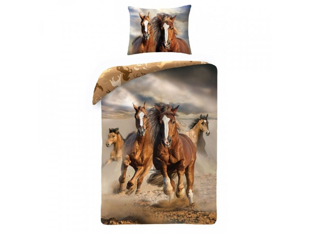 Koně fototisk