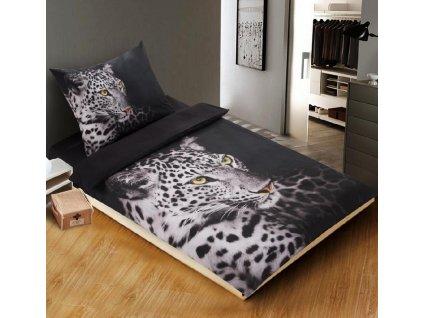 1717 Jaguar