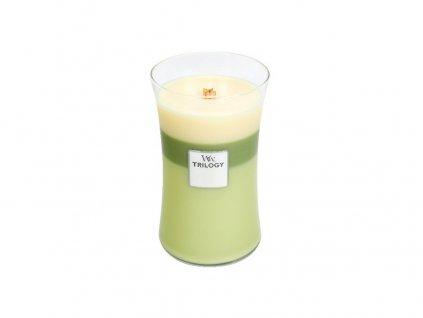 Svíčka oválná váza  WoodWick Trilogy 609,5 g - Zelená oáza