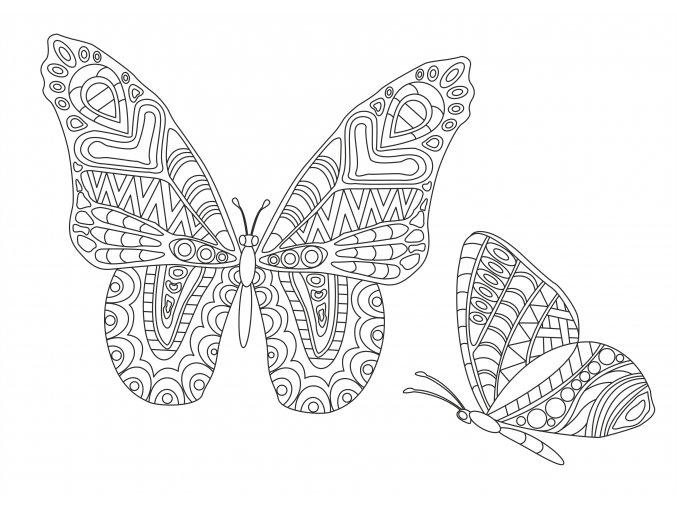 Šablona Motýli