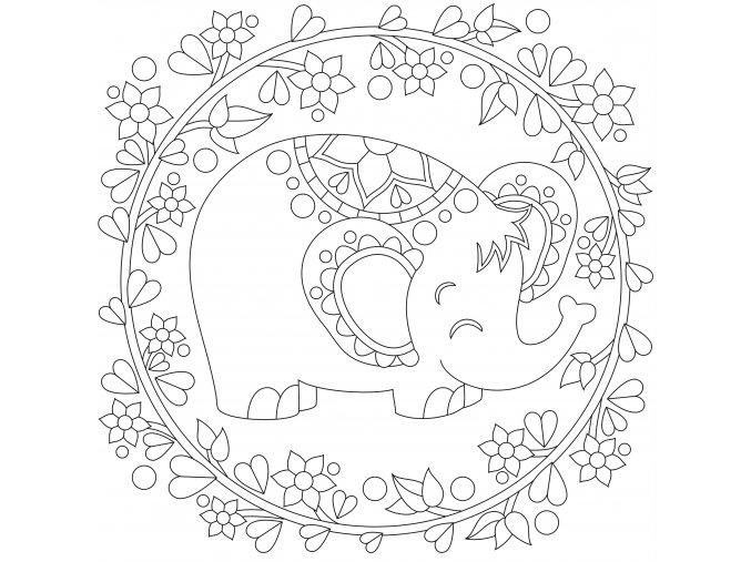 Sloneček s květinami