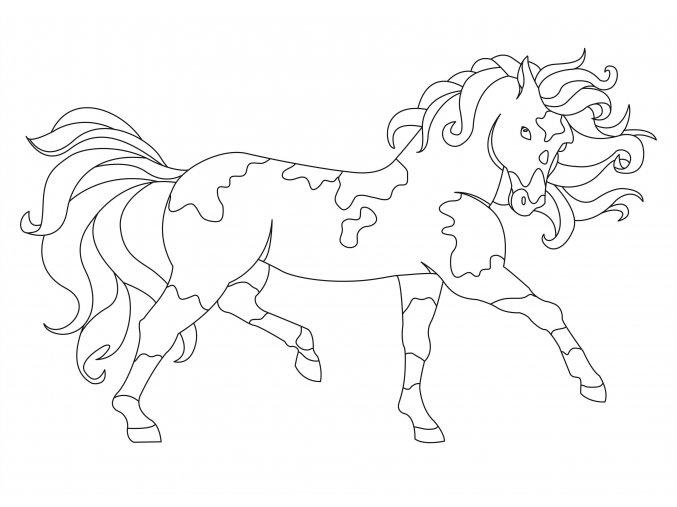 Šablona Kůň 2