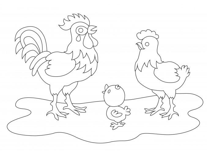 Šablona Kohoutek, slepička a kuřátko