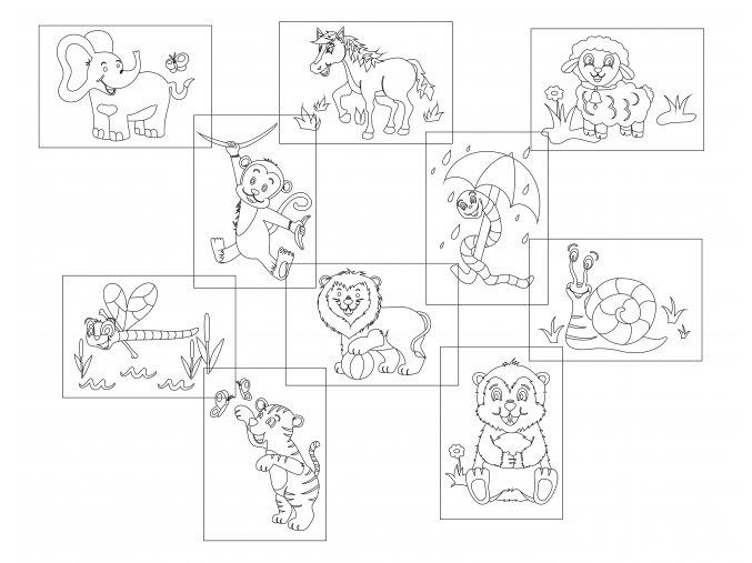 sada 10 zvířata 2