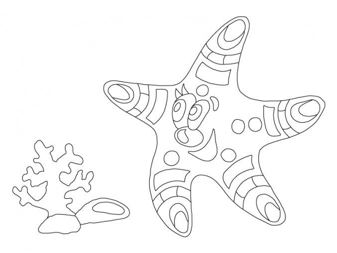 Šablona Mořská hvězdička