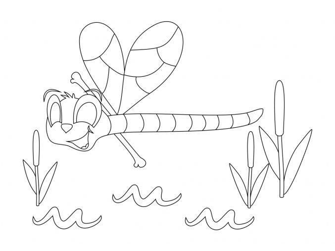 Šablona Vážka