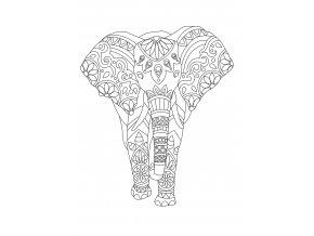 Šablona Slon